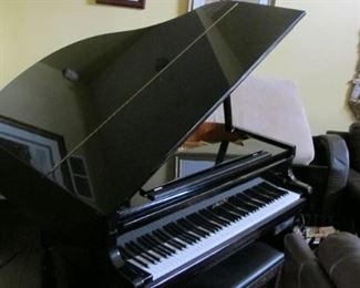 Everett Baby Grand with PLAYER features $4500.00 OBO