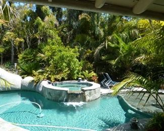 Not a big white snake in the picture, just keeps the pool very clean!