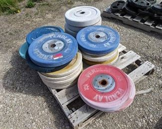 Lot Of Pendlay Weightlifting Weights