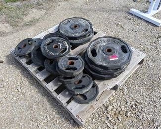 Lot Of Iron Grip Weightlifting Weights