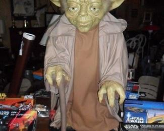 Yoda has been reduced and really needs a new home!