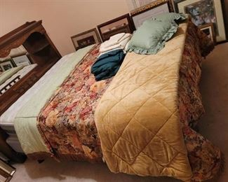 Queen Size Comforter~ Blanket~ 2 Sheet Sets~ Throw Pillows
