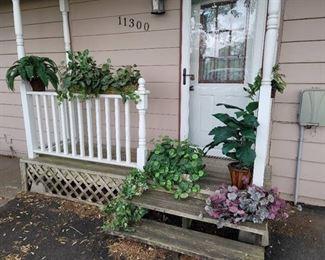 8 Faux Plants