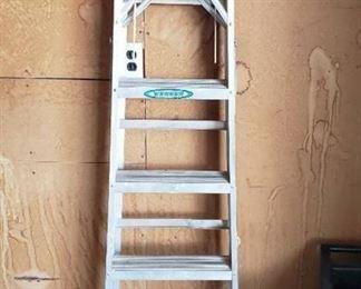 Werner 6 Foot Aluminum Ladder