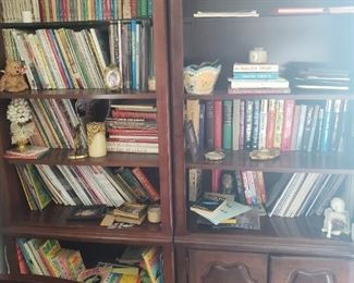 Book Shelves and books