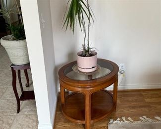 . . . a cute accent table with more live plants