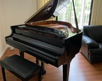 . . . a stunning baby-grand piano