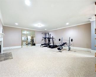 Gym Equipment and individual floor to ceiling mirrors