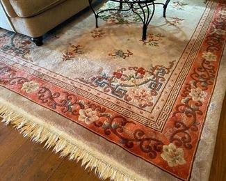 Plush area rug....approx 9 X 12
