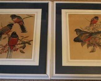 369 - Pair framed prints 20 x 26