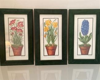 Set of three potted florals