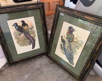 bird artwork $25 each