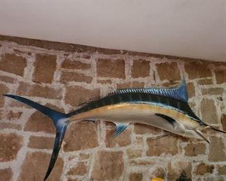 8 Ft 2in Long Marlin