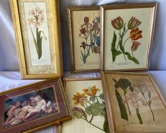 Botanicals and Cherubs