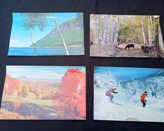Large Vintage Vermont Postcards