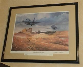 FIGHTING FALCONS IN THE CANYON