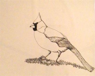"""Jane Paden Original Pen and Ink """"Cardinal"""" (11"""" x 14"""")"""