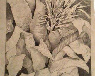 "Jane Paden 'Bromeliads"" Original Charcoal Drawing  (11"" x 14"")"
