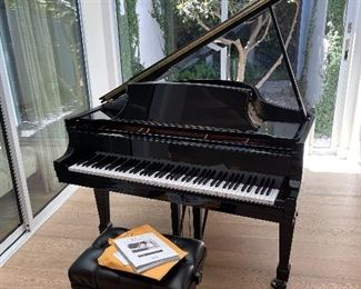 601124 Steinway & Sons purchased new last year