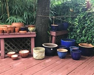 Many more cobalt glazed pots with plants!