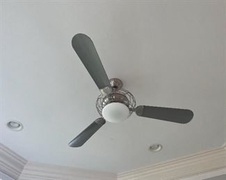 One of many ceiling fans