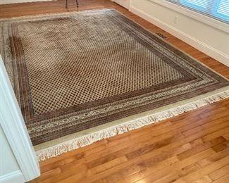 Area rug (9 x 12)