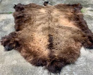 Authentic 7 foot long Buffalo Hide/Robe Excellent Shape