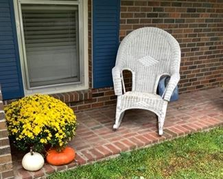 Live mums and pumpkins for front porch.