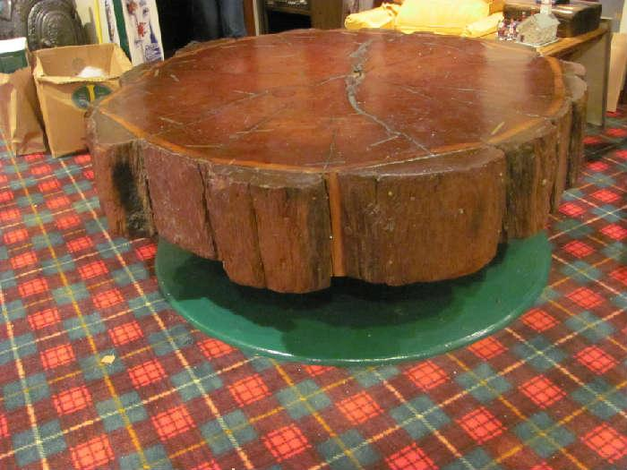 Redwood table with historic dates on brass markers identifying rings in tree