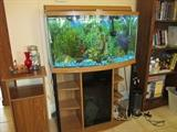 37 Gallon Aquarium, Stand, Plants, Fish, Rocks, and Pump Will Be Sold Together.