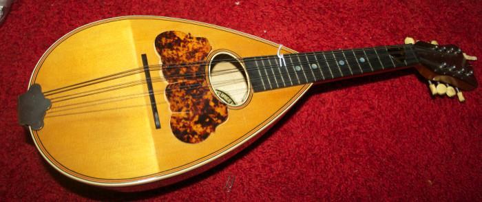 Old Washburn Mandolin