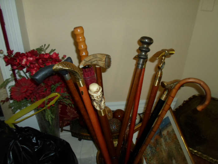 cane collection & holder