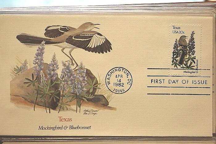 Texas mockingbird with bluebonnets