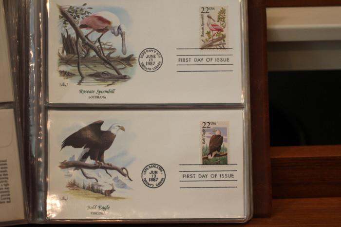 Roseate spoonbill, Bald Eagle