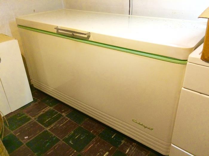 Coldspot Deep Freezer (Clean & Empty!  Still running!)