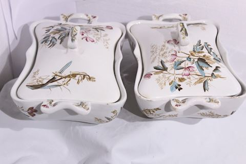 Amemone 8670 Bone China Anderson