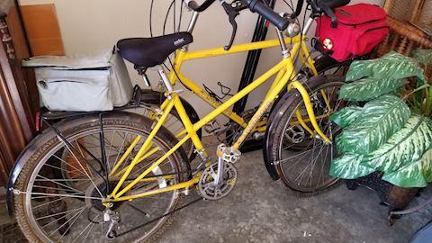 Kuwahara performance bikes his and hers