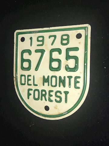 1978 Del Monte Forest plate
