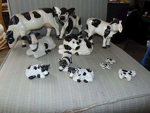 Cow Collection with Eight Cows