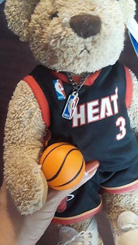 Miami Heat D Wade #3 Bear