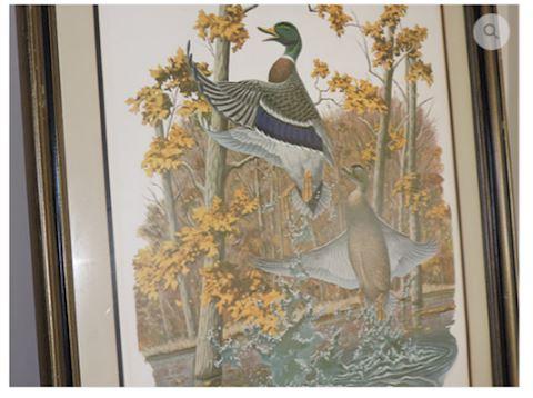 Art Signed by Richard Sloan - Mallard Duck