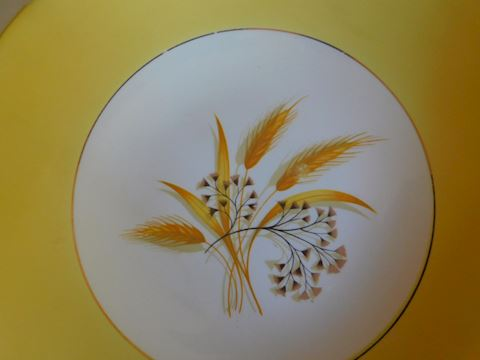 015  Gold and White Shallow Wheat Printed Bowl