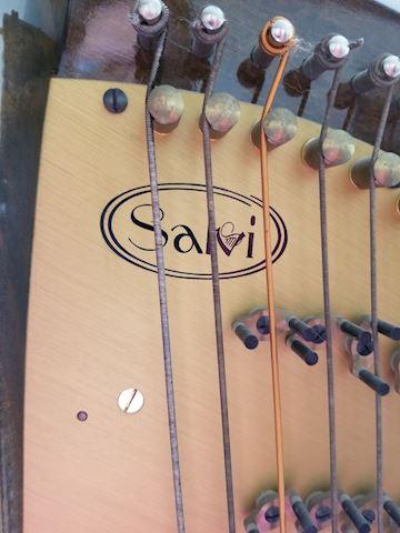 Salvi Pedal Harp