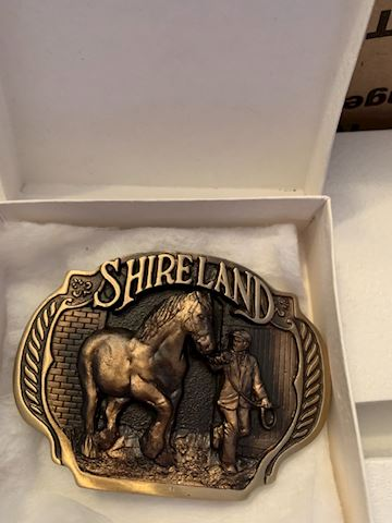 Shireland belt buckles