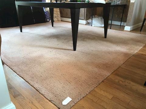 Dinning room rug