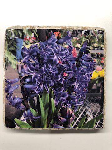 Hyacinth tile coaster