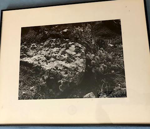 2 Jay Decker photos (framed)