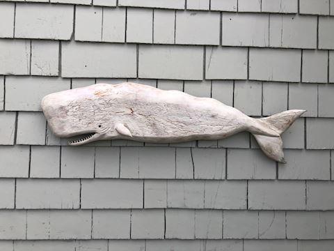 Handmade Sperm Whale