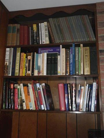 Lot of Books (Family Room)