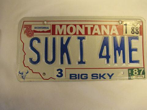 1987 MT Montana License Plate